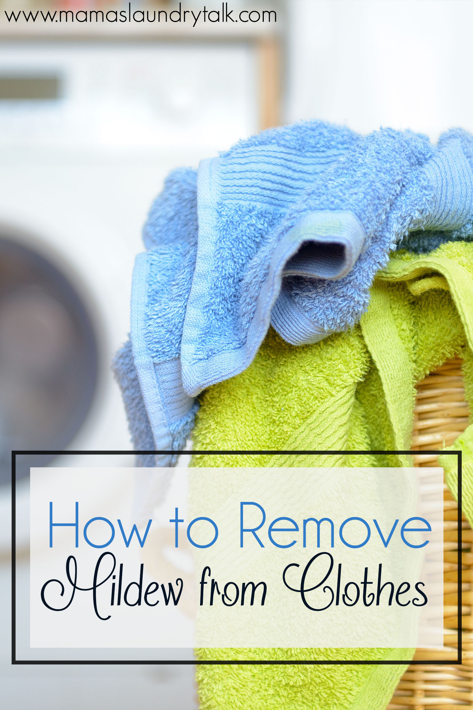 Remove Mold From Fabric